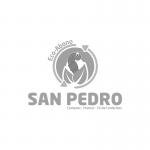 SAN-PEDRO-FUSION-CLIENTES